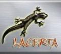 Aktualizacja planów wydawnictwa Lacerta