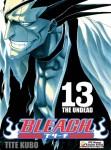 Bleach-13-n32270.jpg