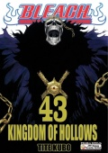 Bleach-43-Kingdom-of-hollows-n49252.jpg
