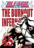 Bleach-45-The-Burnout-Inferno-n49254.jpg