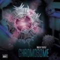 Chromosome-n45354.jpg