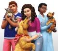 EA pomaga schroniskom dla zwierząt