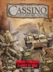 Front Śródziemnomorski: Cassino