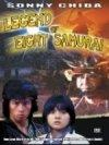 Satomi-hakken-den-n19416.jpg