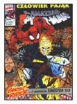 The Amazing Spider-Man #038 (8/1993)